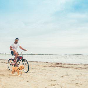 Active vacation – Bike